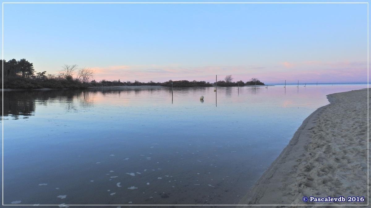 Plage et port de La Hume - Bassin d'Arcachon - Décembre 2016 - 10/10