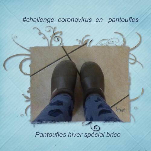 #challenge_coronavirus_en_pantoufles