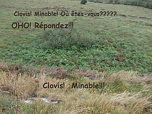 clovis et Minable en Bretagne06