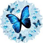 """Papillon """"gris/rose"""""""