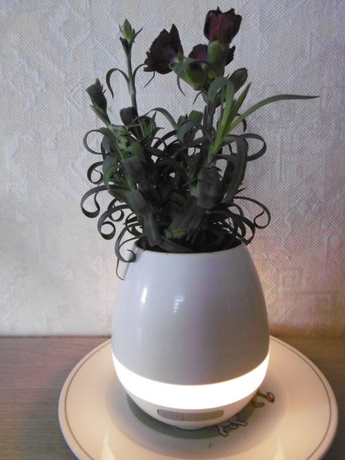 Vase musical Pathonor