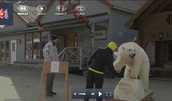 Le Svalbard sur M6