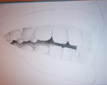 Pas à Pas Dents 12