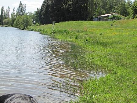 ma-ballade-au-lac-de-Pouzauges 0228