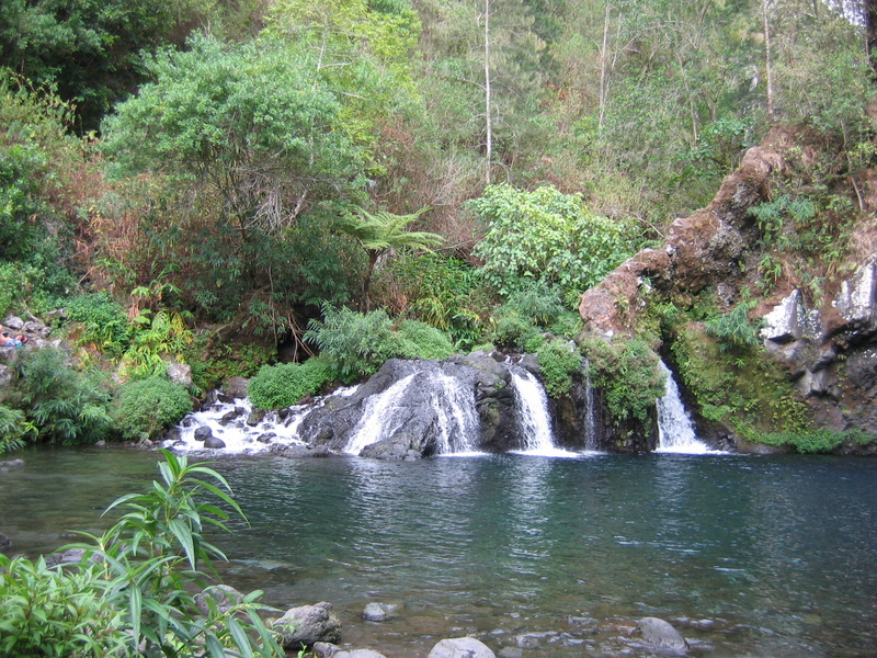 Photos Réunion