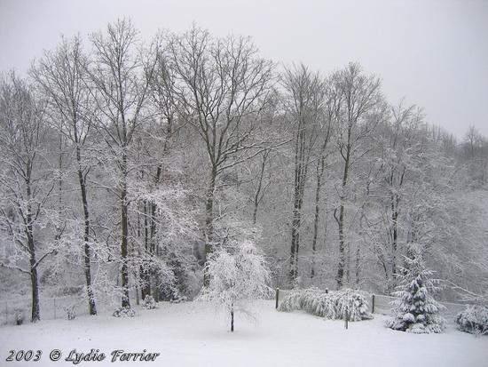 2003 L'hiver