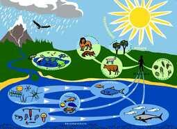 La biodiversité dans notre environnement proche.