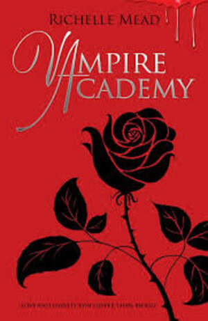 """Chronique du livre """"Soeurs de sang - Vampire Academy - tome1"""""""