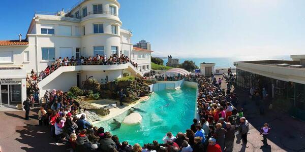 Biarritz : visite de l'aquarium