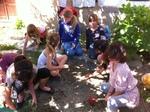 Comment les plantes se développent-elles?