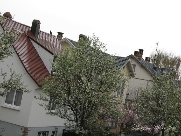 Ciel d'Alsace 359