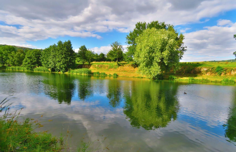 paysage / reflets
