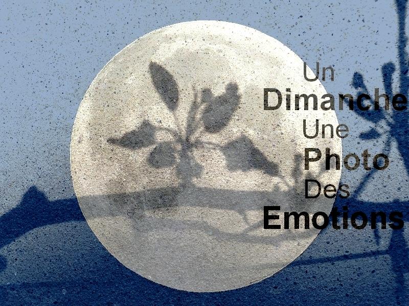 Metz / La photo du dimanche 18 octobre 2015...