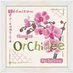 Lilipoints orchidée