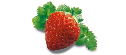 Hum ! la fraise des bois ! ...
