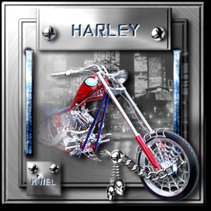 """""""Harley"""""""