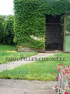 FARFOUILLE'S chronicle