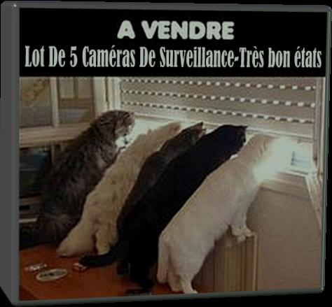 A Vendre Caméras de Surveillance (Humour)