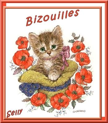 **Rêves de chats**Suite