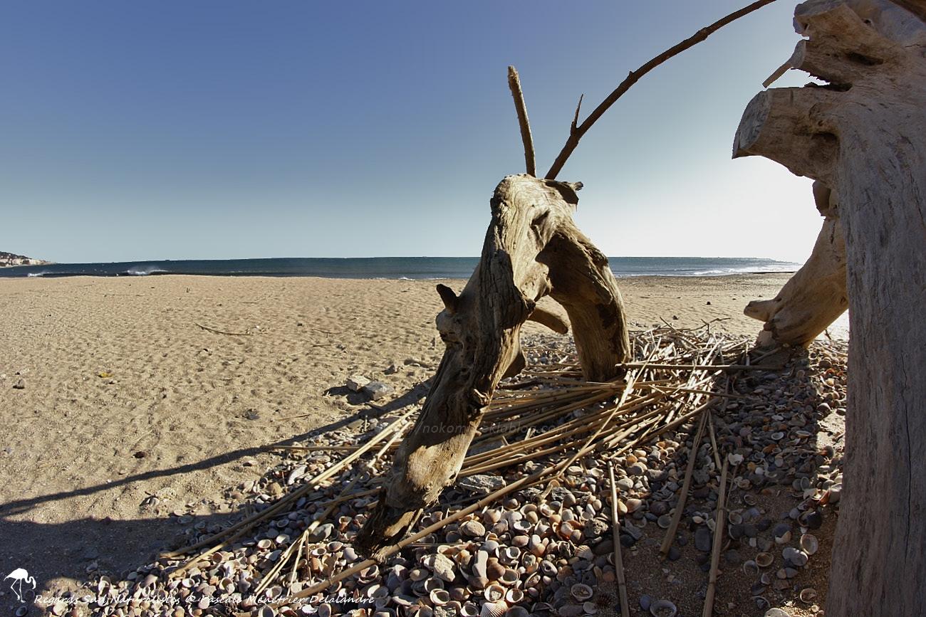 Sur la plage de la Corniche