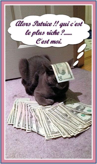 Chat marque les esprits !!