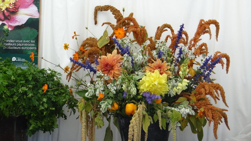 Ma Première Fête des Plantes à Saint Jean de Beauregard (3) Bouquet du Vendredi