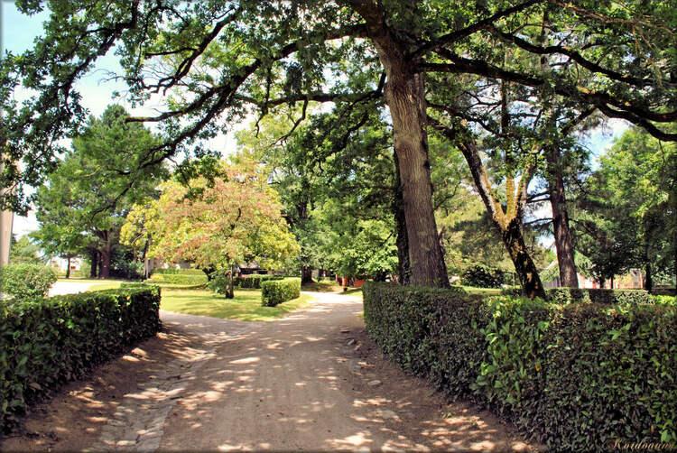 Photos promenade dans le parc (Haras de Vendée)