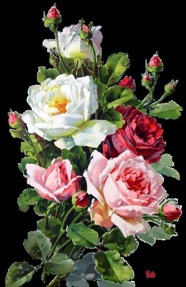 Que des roses