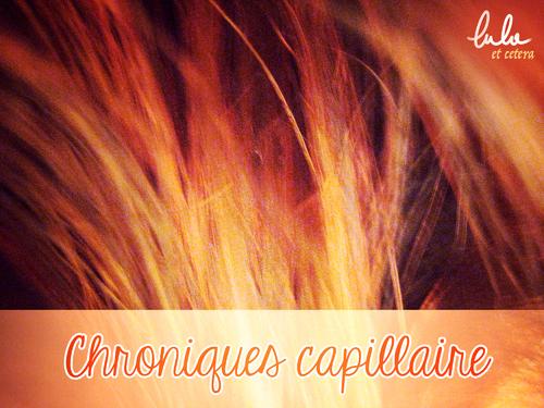 Chronique capillaire : Mon historique