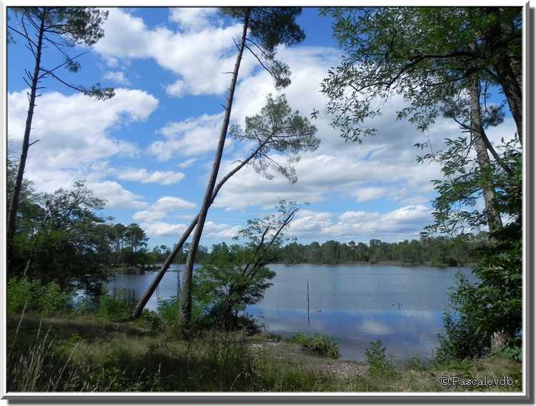 Les lacs d'Hostens