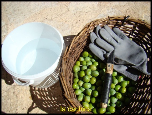 olives-Bouteillan--23-.JPG