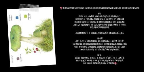 Dessin et peinture - vidéo 3360 : Comment dessiner un champignon en couleur ? - crayons de couleur.