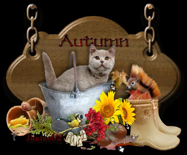 ♥ Bonne journée d' Athos & Cheyenne ♥