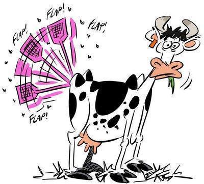 Dernier concours Lépine, la vache tapette à mouches !