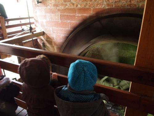 Les petits / moyens à l'atelier farine au moulin d'Eschviller