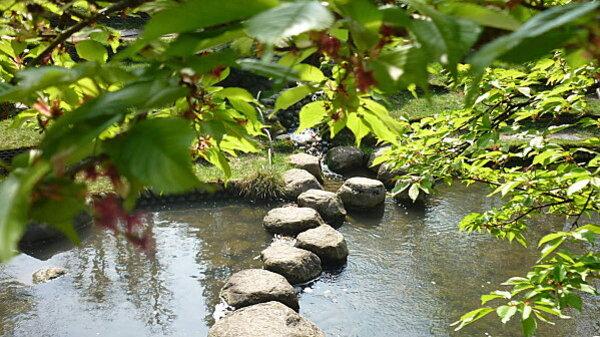 Jardins Albert Kahn 196