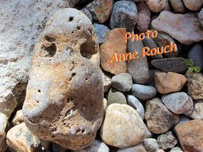 La page de Anne R.