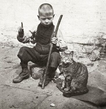 05 - Des chats et des enfants