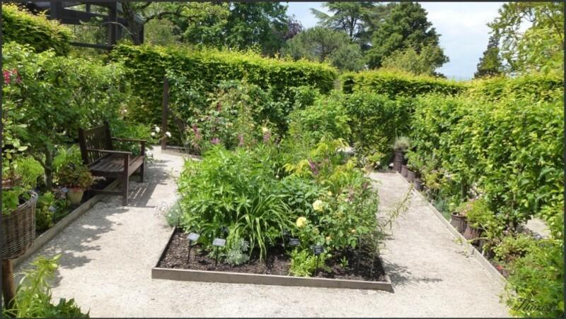 Jardin de l'odorat (1)
