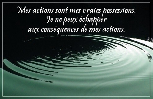 mes-actions02.jpg