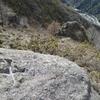 Croix grecque à bouts pattés (245 m) entre les bornes frontière 1 et 2