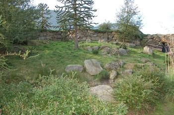 dierenpark emmen d50 152