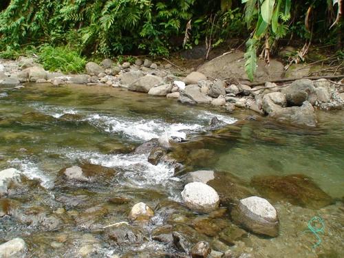 Rivière Blanche Coeur Bouliki Saint-Joseph