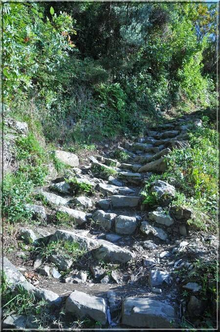 Italie, les 5 Terres : le sentier N°6 entre Corniglia et Manarola