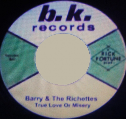 BARRY & THE RICHETTES - true love or misery
