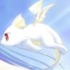 piti-dragon-162184355