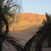 065 Aux Dunes d\'Or 16