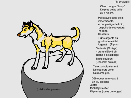 (CrossBreed) Dogs Worlds