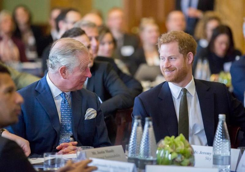 The Prince's International Sustainability Unit