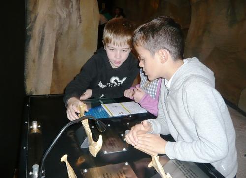 CE2 Musée de l'ours des cavernes